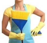 Секрет быстрой уборки квартиры или дома