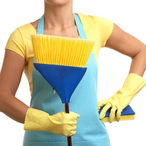 Какой лучший способ, для того чтобы убрать свой дом или квартиру?