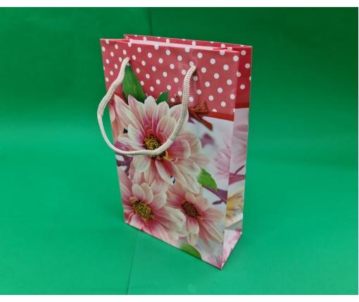Бумажный пакет подарочный Средний 17/26/8 (артSV-083) (12 шт)