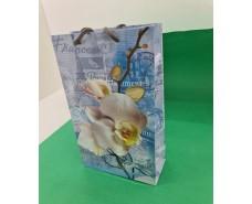 Бумажный пакет подарочный Средний 17/26/8 (артSV-157) (12 шт)