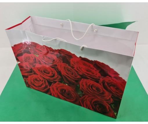 Бумажный пакет горизонтальный гигант 46*33*15 (артGG-001) (12 шт)