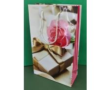 Бумажный пакет подарочный Средний 17/26/8 (артSV-169) (12 шт)