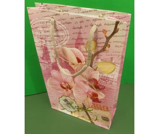 Бумажный пакет подарочный Средний 17/26/8 (артSV-155) (12 шт)