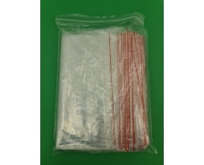 .Пакет с замком zipp 25x30  польские(100шт) (1 пач)