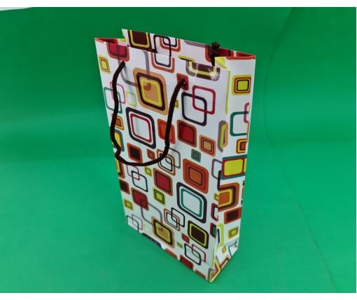 Бумажный пакет подарочный Средний 17/26/8 (артSV-110) (12 шт)